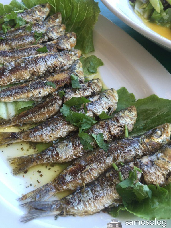 Grilled sardines from Doña Rosa in Avlakia